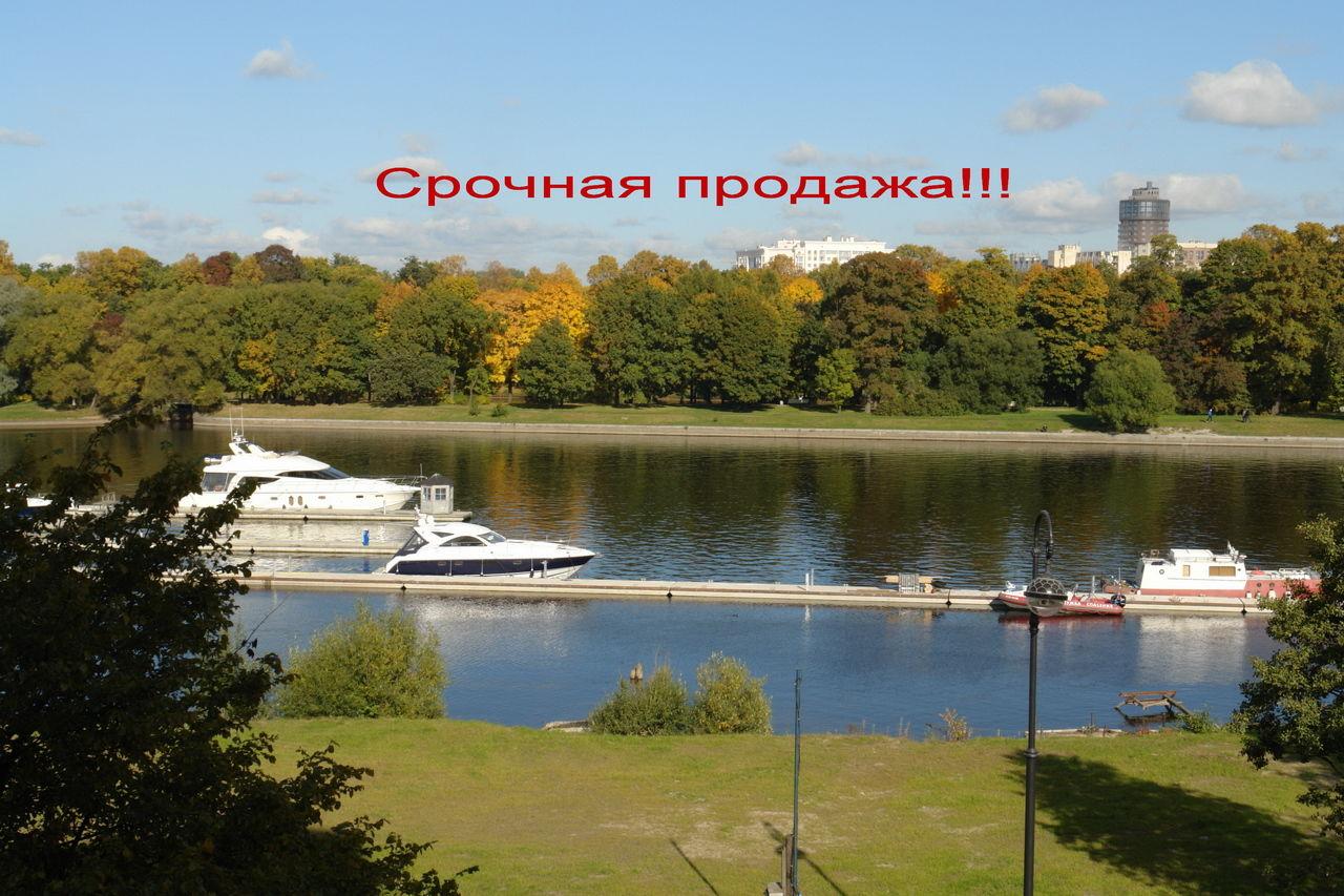 Продажа элитных квартир Санкт-Петербурга.  Вид из окон