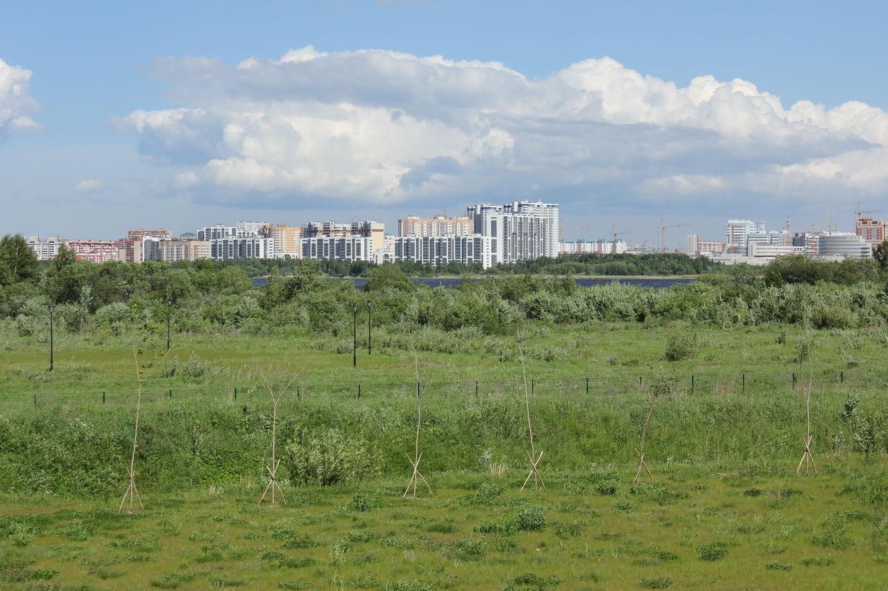 Продажа элитных квартир Санкт-Петербурга.    Вид из окон в сторону Лахтинского разлива