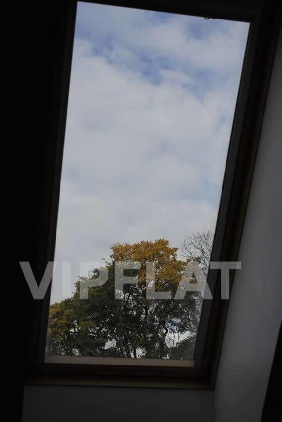 Продажа элитных квартир Санкт-Петербурга. Каменный остров, 2-я Березовая ал., 34 Через мансардные окна - в небо и на кроны деревьев